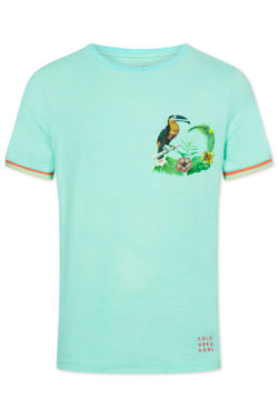 COLOURS & SONS T Shirt 9120-473